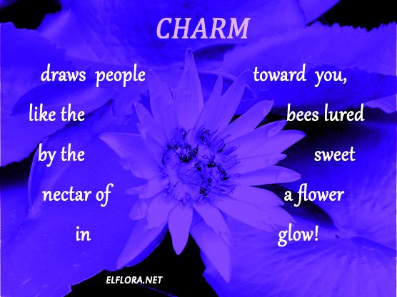 purple-flower-copy