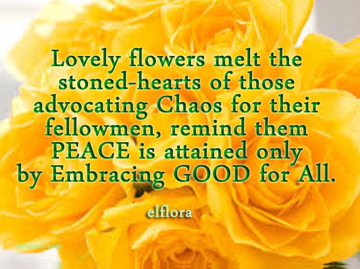 flowersorange