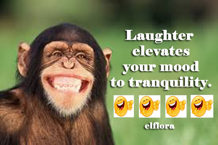 laughtermood