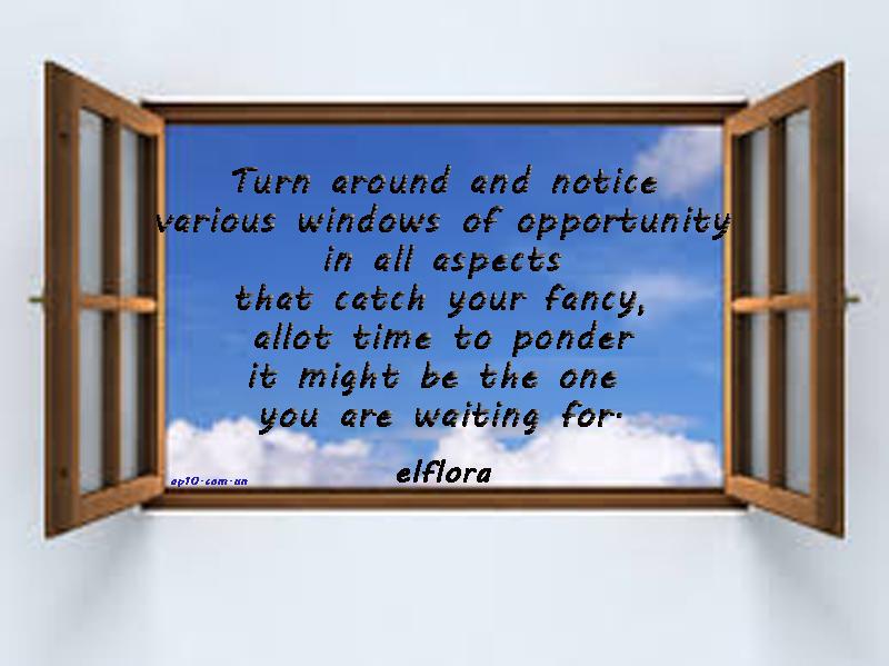 windowopportuity