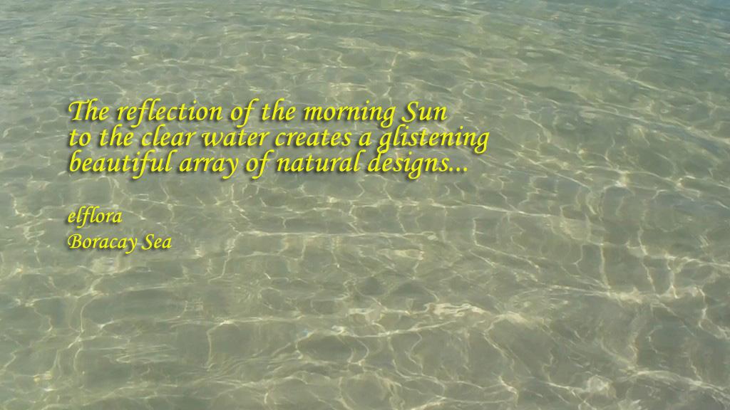 waterreflectionaDSCN0807