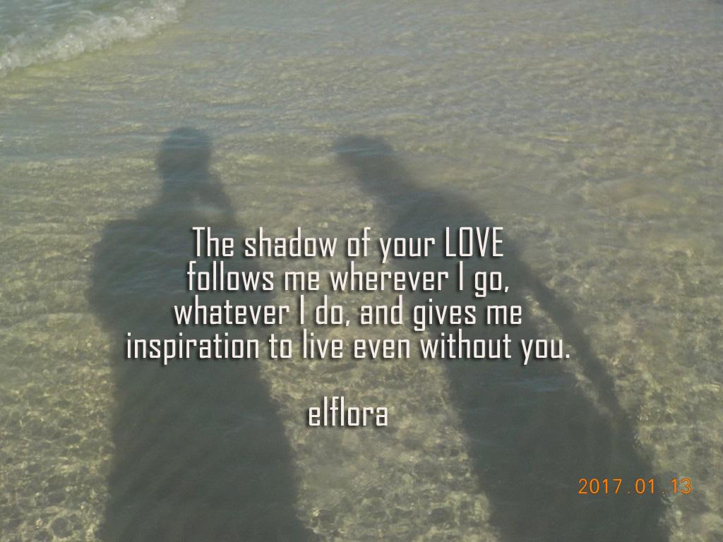 shadowof-loveDSCN0816