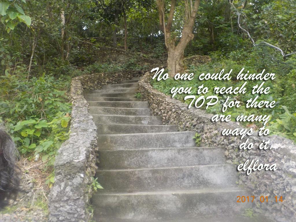 stairwaysDSCN1222