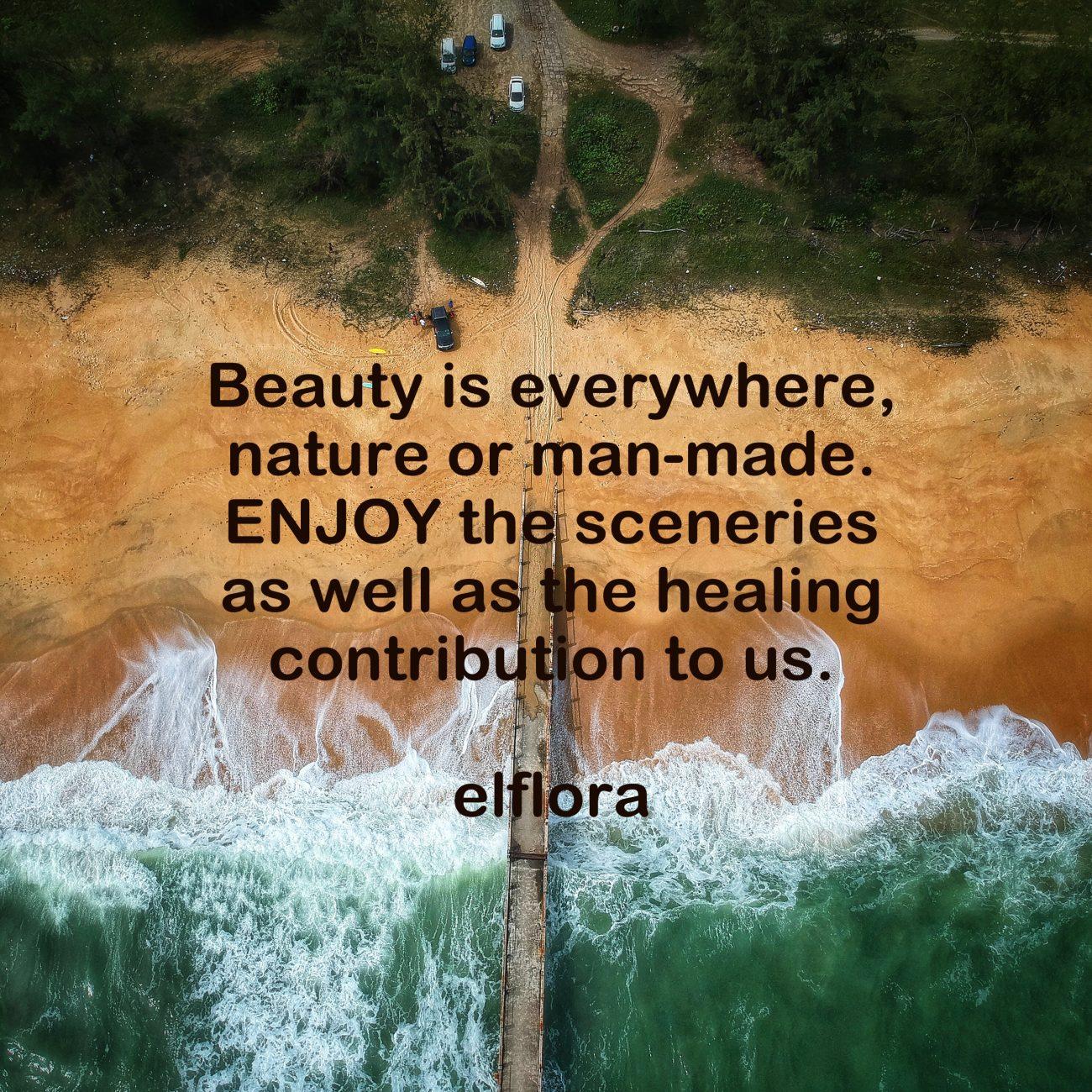 Beauty Is Everywhere El Flora